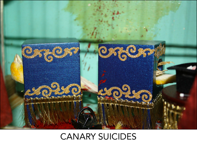 Canary Suicides